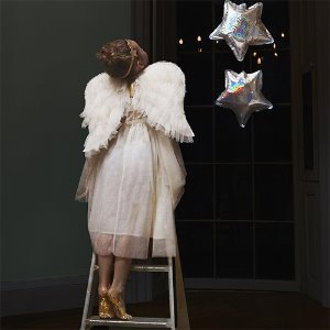 Tulle Angel Wing Dress Up